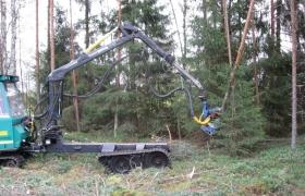 Alajarvi_energiapuu_005_143