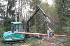 Alajarvi_energiapuu_010_137